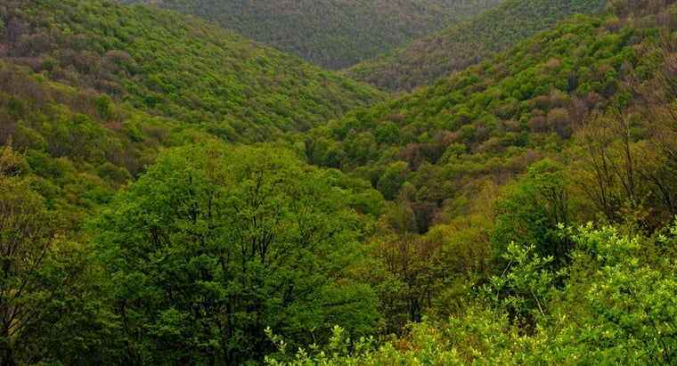 Where Do the Appalachian Mountains Start and End?