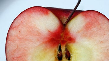 How Are Apple Seeds Dispersed?