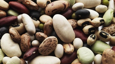 Are Beans Considered Vegetables?