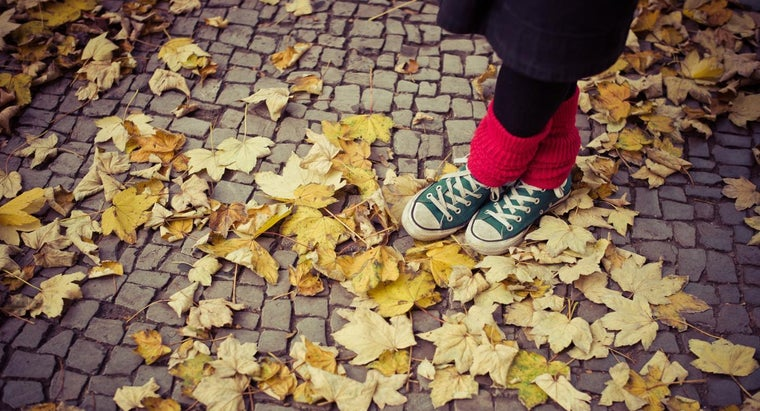 When Does Autumn Start and End?