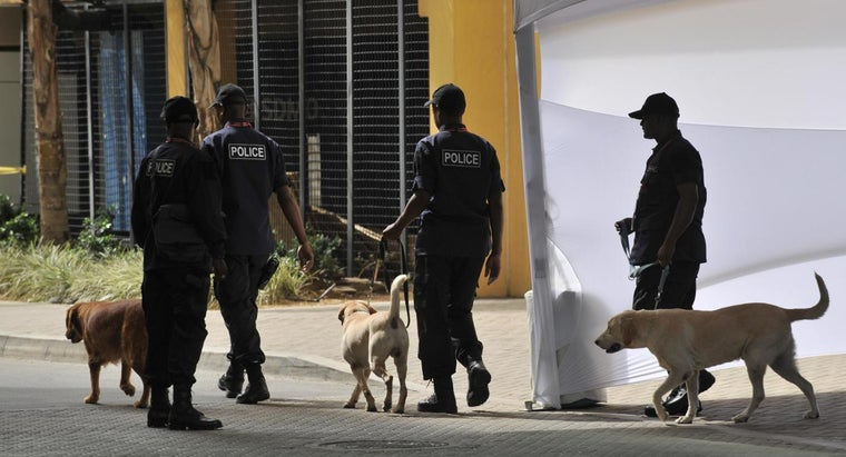 How Bad Is the Crime in Trinidad and Tobago Compared to the Rest of the World?