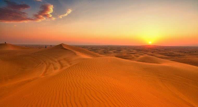 What Are the Biotic and Abiotic Factors in Deserts?