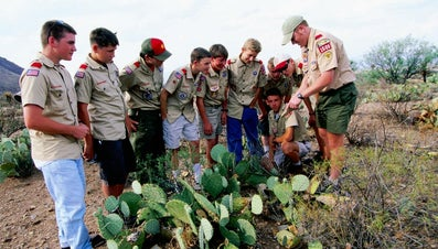 What Is the Boy Scout Movement?