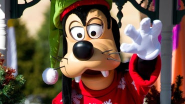 What Breed of Dog Is Disney's Goofy?