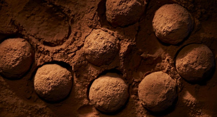 How Much Caffeine Is in Cocoa Powder?