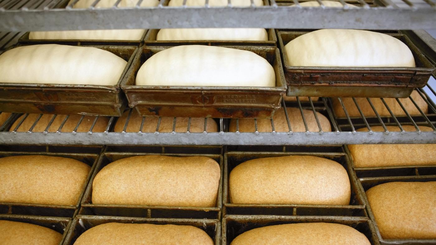types of leavening agents