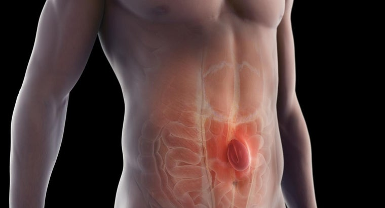 Where Can You Find Pictures That Explain Hernia Symptoms?