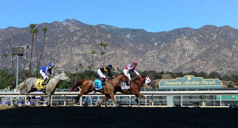 Where Can You Find Racing Picks for Santa Anita?