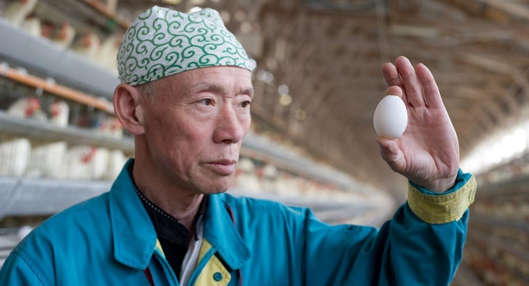 Can You Get Sick From Eating Old Eggs?