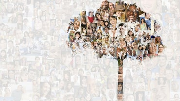 Where Can You Find Templates to Create a Family Tree in Microsoft Office?