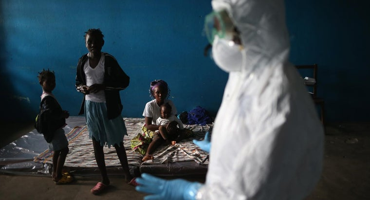 How Can I Track Ebola Virus Outbreaks?