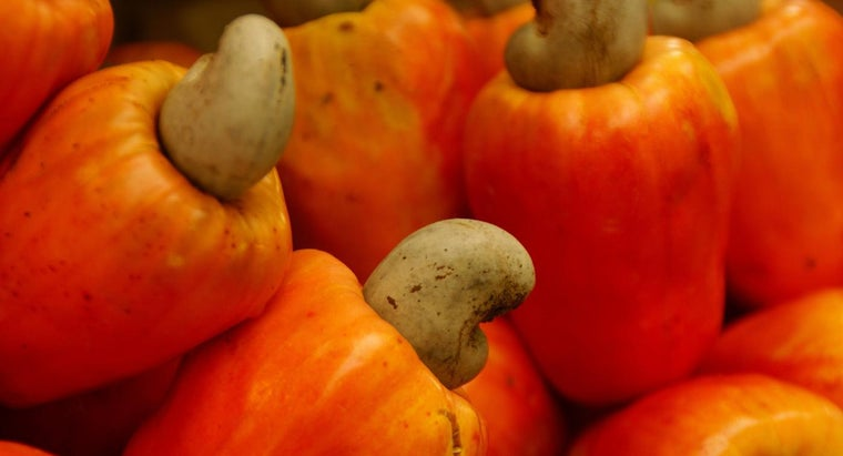 Where Do Cashew Nuts Come From?
