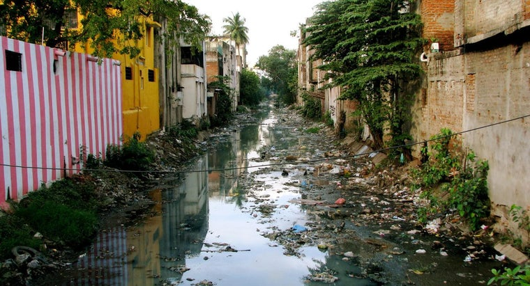 What Are the Causes of Environmental Degradation in India?