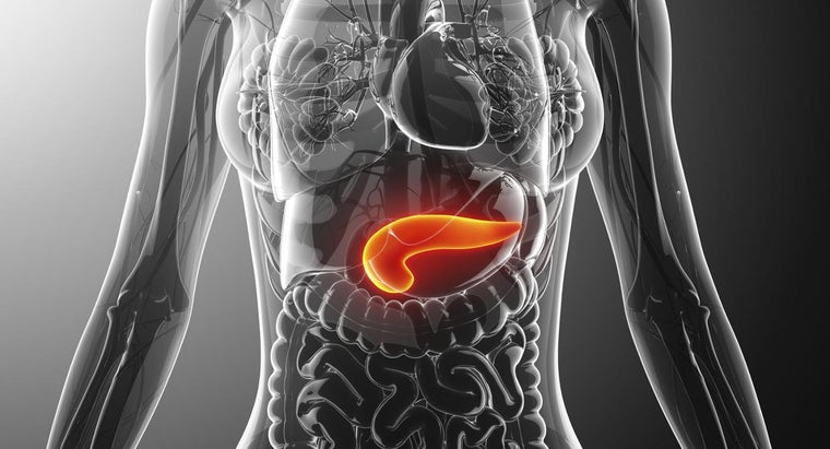 What Causes Pancreatitis?