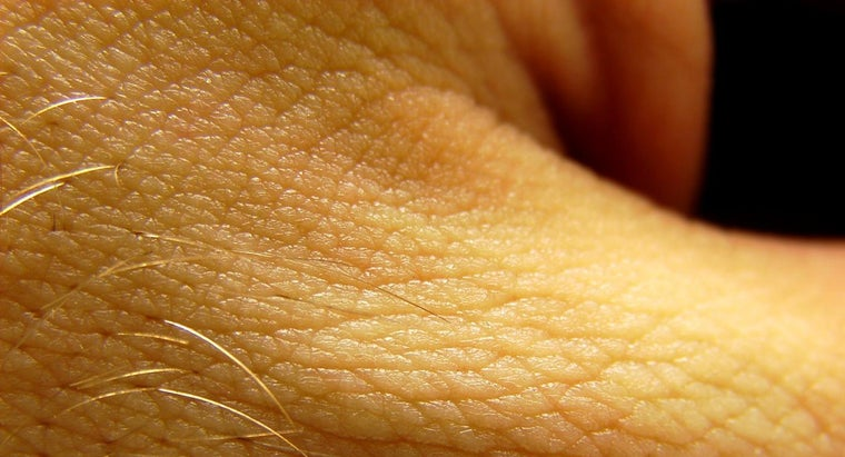 What Causes the Skin to Hurt When It Is Touched?