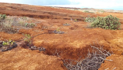 What Causes Soil Erosion?