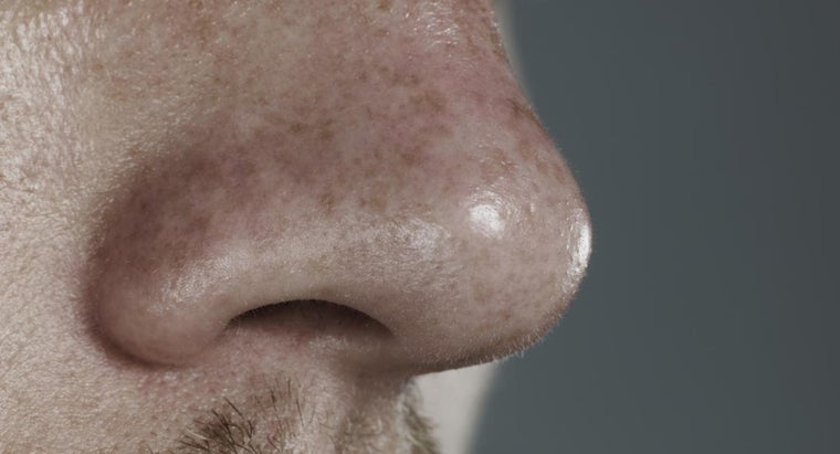 What Causes Sores Inside The Nose Reference Com