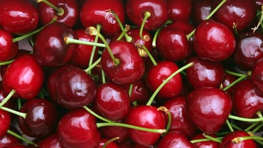 Do Cherries Grow on Trees or Bushes?