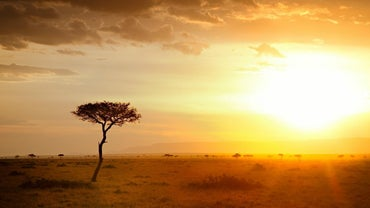 What Is the Climate in Africa?