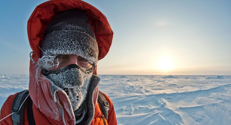 How Cold Is It in the Arctic?