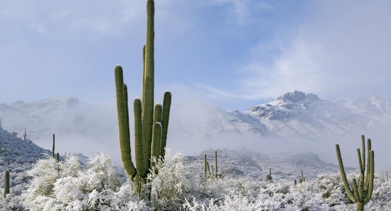 What Is a Cold Desert?