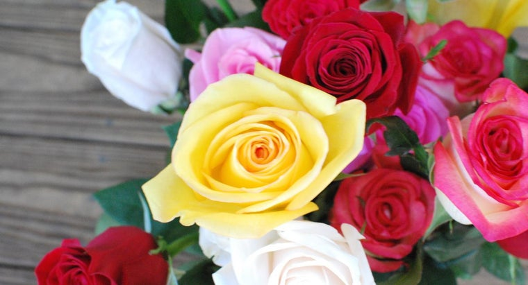 What Colors of Roses Are Available to Buy?
