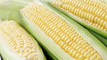 Is Corn Considered a Vegetable?
