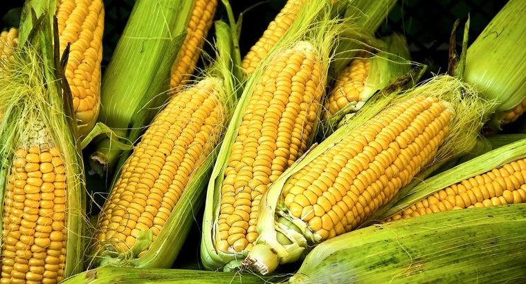 Is Corn a Starch or Vegetable?