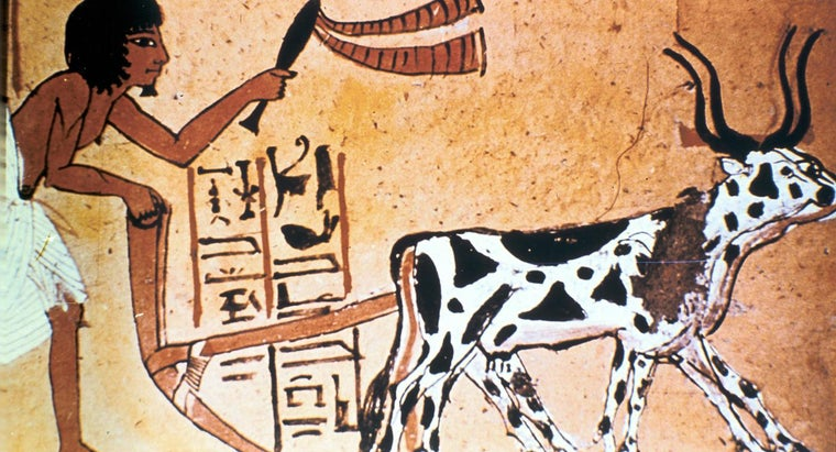 What Crops Did the Ancient Egyptians Grow?