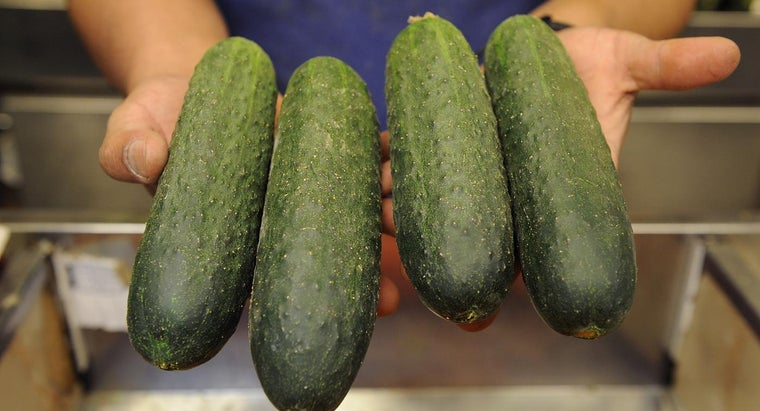 What Are Some Cucumber Growing Tips?