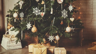 Why Do We Decorate With Christmas Trees?