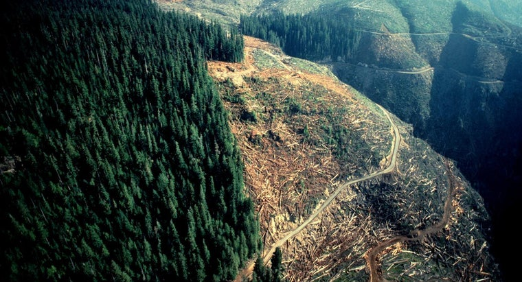 Do Deforestation and Soil Erosion Cause Floods and Droughts?