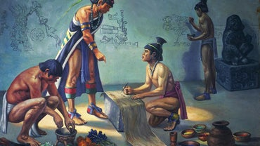 How Did the Aztecs Adapt to Their Environment?