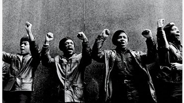 What Did the Black Panthers Do?
