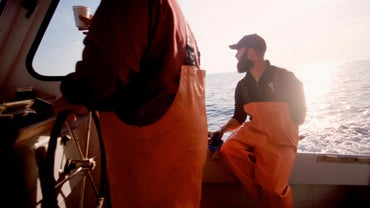 Why Did the East Coast Fishery Collapse?
