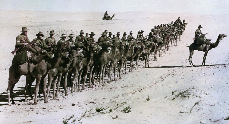 How Did Imperialism Contribute to World War I?