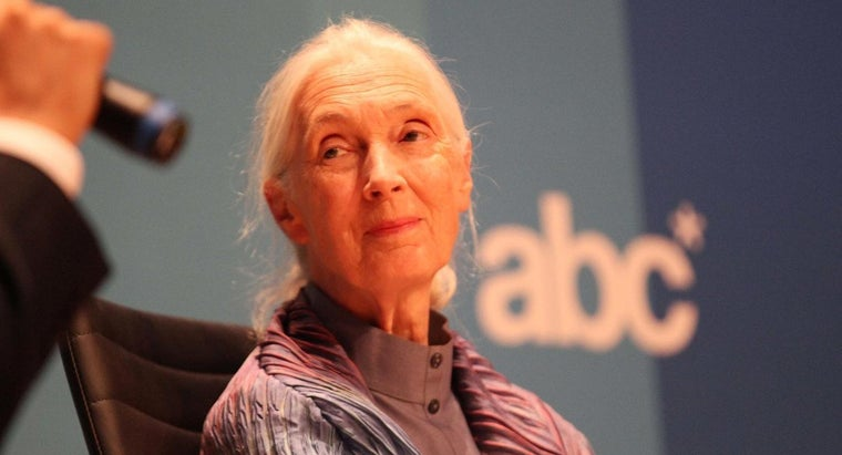What Did Jane Goodall Do?