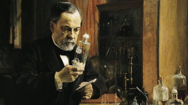 Did Louis Pasteur Have Any Brothers or Sisters?