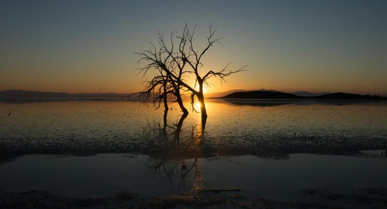 How Did the Salton Sea Form?