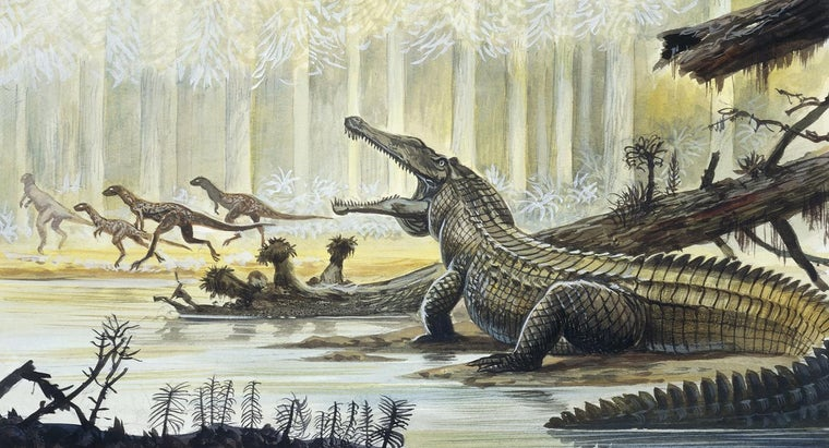 When Did the Triassic Period Begin and End?