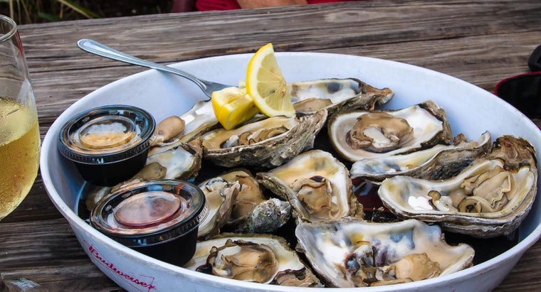 What Is the Difference Between Clams and Oysters?
