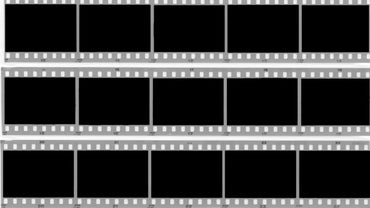 What Is the Difference Between Microfiche and Microfilm?