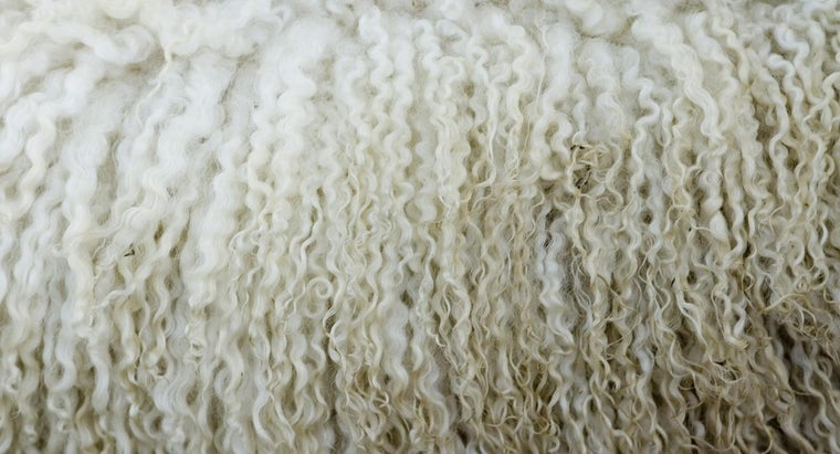 What Is the Difference Between Virgin Wool and Regular Wool?
