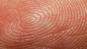 What Is the Difference Between Visible and Latent Fingerprints?