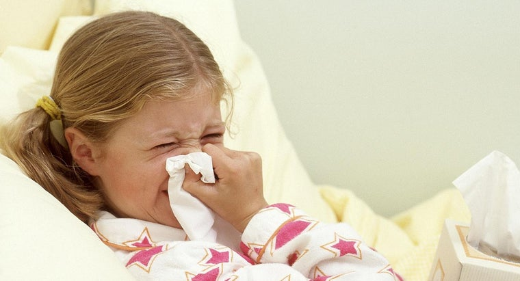 What Are Effective Home Remedies for a Runny Nose?