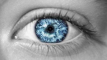 What Enables the Human Eye to See Colors?