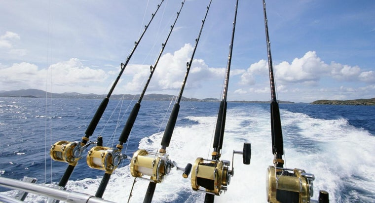What Equipment Do You Need to Go Deep Sea Fishing in Gulf Shores?
