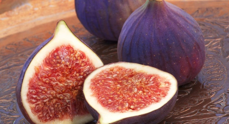 Where Do Figs Grow?