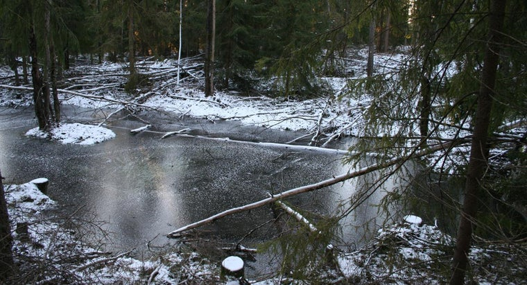 Which Freezes Faster: Freshwater or Saltwater?