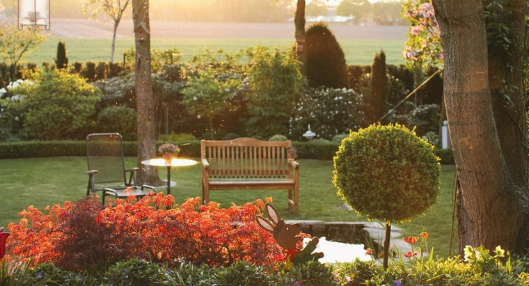 What Is a Garden Planning Software?